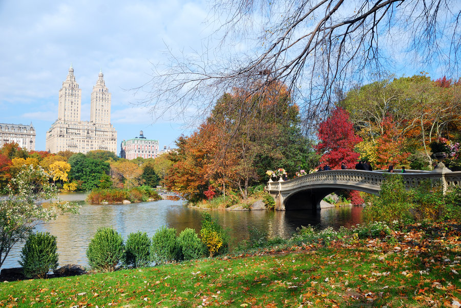 Central Park - Executive Plaza NYC